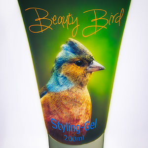 Beauty-Bird